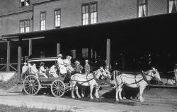 Stagecoach at Mammoth Hotel Photo