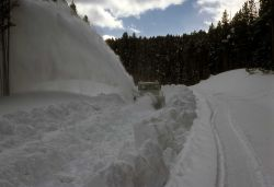 Spring plowing on Cascade HIll Photo