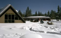 Four Seasons Snack Shop at Old Faithful Photo