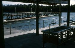 Fish cleaning facility at Bridge Bay Marina Photo