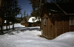 Cabins behind Old Faithful Snow Lodge in the winter Photo
