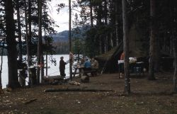 Campers at Trail Creek campsite (southeast arm of Yellowstone Lake) with electric bear fence strung between trees Photo