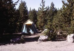 Tent set up in site at Fishing Bridge campground Photo