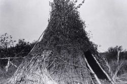 Bannock wickiup - History - Indians Photo