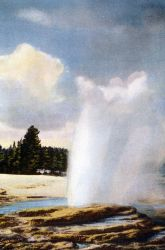Postcard of Lakeshore Geyser Photo