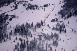 Bison reduction (winter) Nez Perce Photo