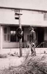 Captain George Anderson with a chained black bear on a pole at Mammoth Hot Springs Photo