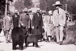 President Coolidge with Superintendent Albright at Roosevelt Lodge with two black bears Photo