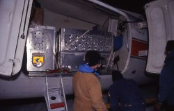 Unloading wolf shipping containers from plane at the Bozeman airport Photo