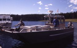 The Warwood (boat) loaded with Trail Creek wolves Photo