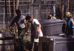 Carrying crates with Trail Creek wolves Photo