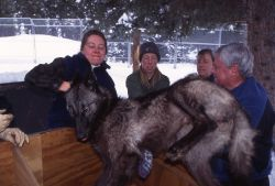 Lisa Belmoute, Michelle, Deb Guernsey & Homar Luther at Rose Creek wolf pen Photo