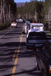 Vehicles waiting for road to open in Gibbon Canyon Photo