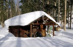 Upper Miller Creek patrol cabin in the winter Photo