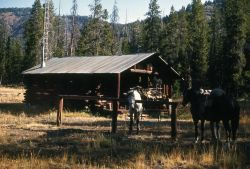 Cold Creek patrol cabin Photo
