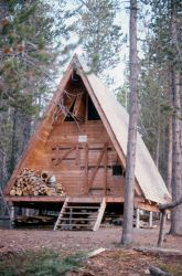 Cove patrol cabin on Shoshone Lake Photo