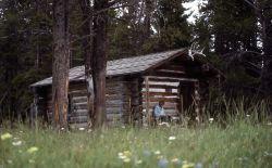 Pelican Creek patrol cabin Photo