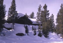 Norris museum in the winter Photo