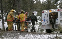 Fire crew & ranger loading patient into ambulance Photo