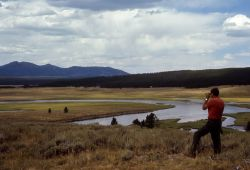 Hayden Valley - Yellowstone River & Washburn Range Photo