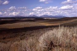 Hayden Valley & Washburn Range from Mary Mountain Road Photo