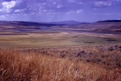 Hayden Valley - Yellowstone River & Washburn Range Photo