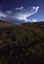 Hayden Valley with clouds Photo