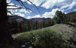 Sheep Mountain Photo