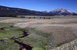 Gardner River & Gardner hole with Electric Peak in the background Photo