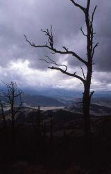On Bighorn Peak Photo