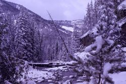 Old Miller Creek bridge in the winter Photo