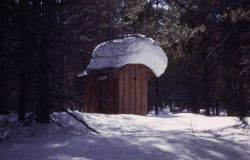 Outhouse buried in snow at Norris Geyser Basin in the winter Photo