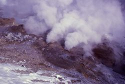 Fumerole - Norris Geyser Basin Photo