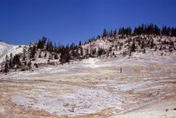 Sulfur Springs area - Mud Volcano area Photo