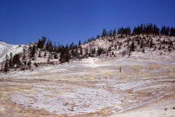 Sulfur Springs area - Mud Volcano area Photo