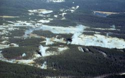 Aerial view of Norris Geyser Basin looking North Image