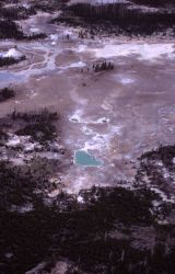 Aerial view of Norris Geyser Basin Image