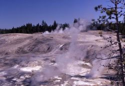 Porcelain Basin - Norris Geyser Basin Photo