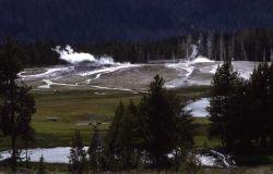 Upper Geyser Basin Photo