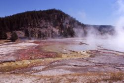 Excelsior Geyser & flows - Midway & Lower Geyser Basin Photo