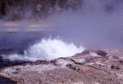 Steady Geyser - Midway & Lower Geyser Basin Photo