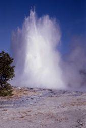 Great Fountain Geyser - Midway & Lower Geyser Basin Photo