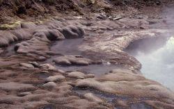 Geyser in Sulfur Springs area - Mud Volcano area Photo