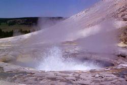 Sulphur Spring (also known as Crater Hills Geyser), Crater Hills area, Hayden Valley - Mud Volcano area Photo