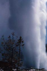 Steamboat Geyser in steam phase - Norris Geyser Basin Photo