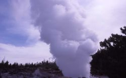 Steamboat Geyser in steam phase at 10:00 AM on May 2, 2000 (5:00 AM eruption) - Norris Geyser Basin Photo