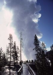 Steamboat Geyser in steam phase after August 25, 1978 eruption - Norris Geyser Basin Photo