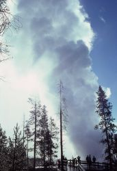 Steamboat Geyser erupting August 25, 1978 - Norris Geyser Basin Photo