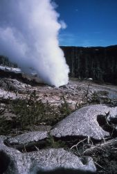 Steamboat Geyser in steam phase with gravel spattered snow - Norris Geyser Basin Photo