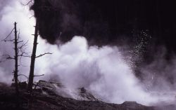 Steamboat Geyser in typical minor play - Norris Geyser Basin Photo